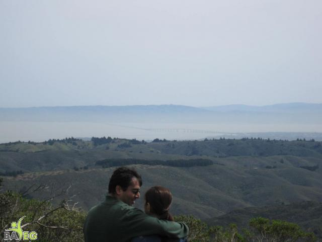 Great view from the top!  That's the San Mateo bridge in the distance