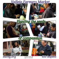Vallejo Farmer's Market January 2015