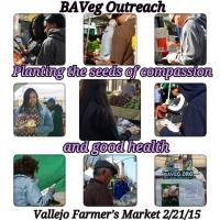 Vallejo Farmer's Market February 2015