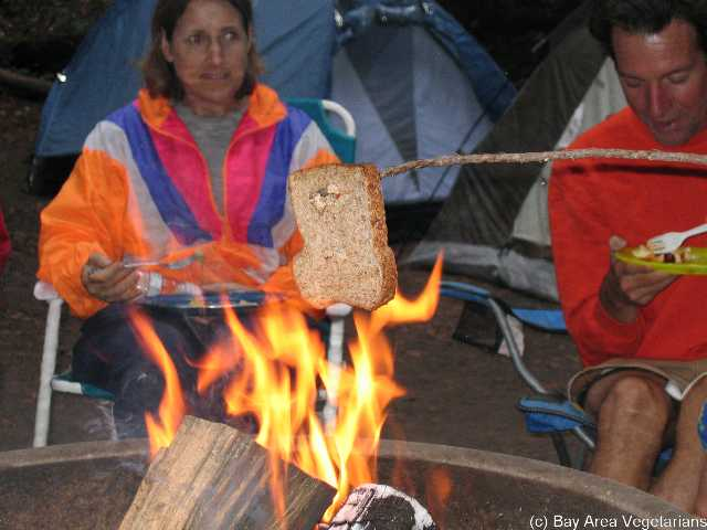 Campfire toaster