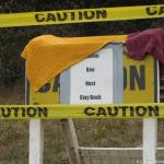 on caution tape warning of an active bee hive