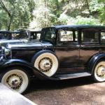 veg food enthusiasts meet old car enthusiasts in redwoods