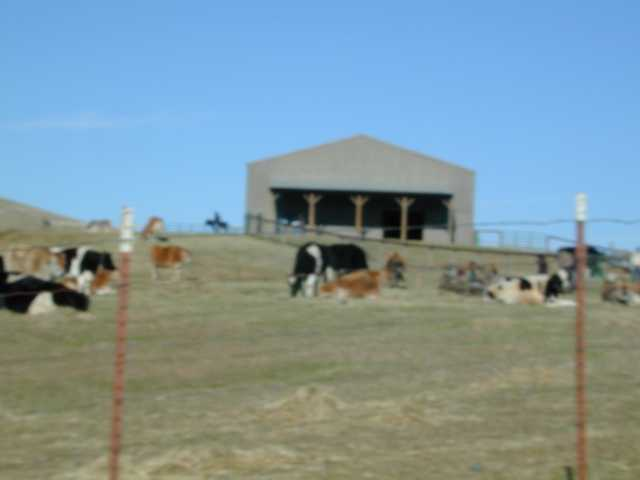 A scenic view of Farm Sanctuary from the hayride