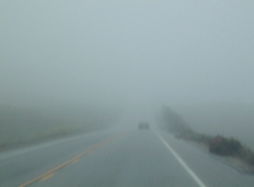 As you can see, it looked like it was getting foggier and foggier as we approached Pescadero.