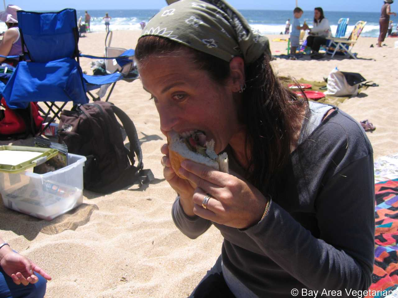 Sue and the Vegan Sandwich