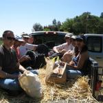 Hayride to Animal Place