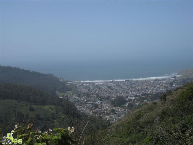 View of Pacifica and Ocean from San Pedro Valley Park, Pacifica