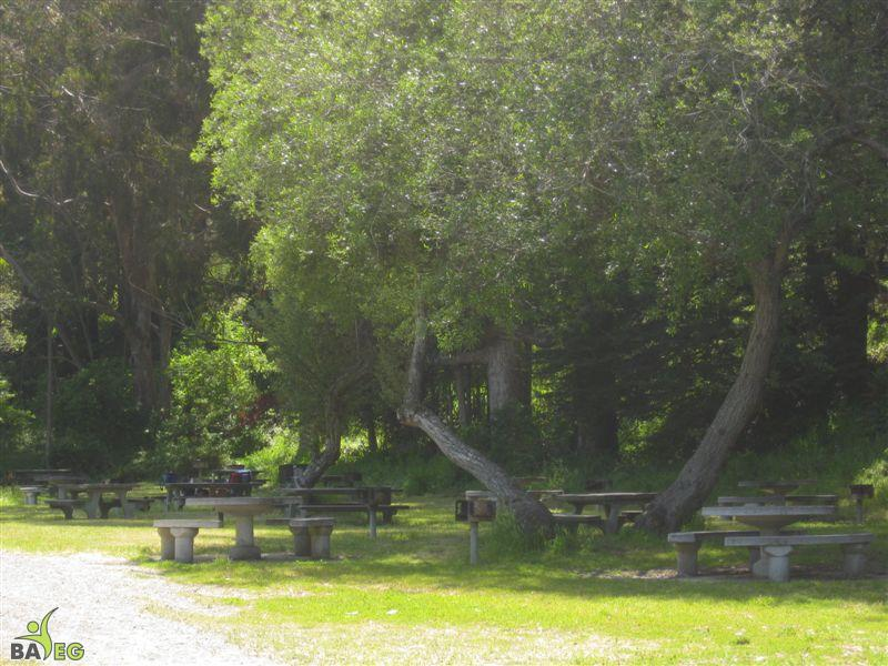Drop-in picnic grounds